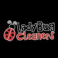 The Ladybug Cleaners Store