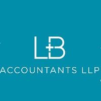The Lb Accountants Store