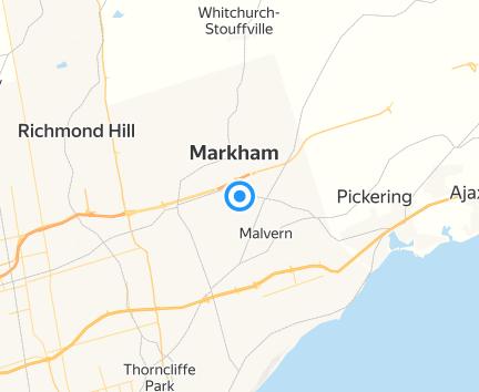 Costco Markham