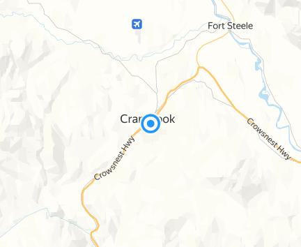Giant Tiger Cranbrook