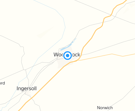 Giant Tiger Woodstock